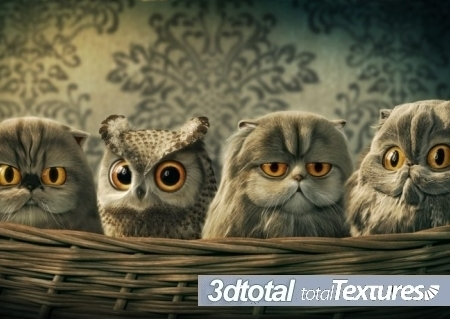 3D Total Textures Vol.15 Release 2.1: Toon Textures » SoftsDl.net ... | Machinimania | Scoop.it