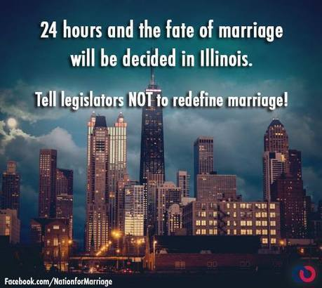 To stop equality in Illinois, NOM relies on old standby: Scary weather | Daily Crew | Scoop.it