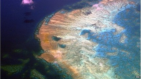 Great Barrier Reef outlook 'poor' | Masada Geography | Scoop.it