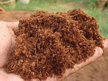 agriculture: BENEFITS OF COCONUT FIBER OR COCOPEAT | Organic Farming | Scoop.it