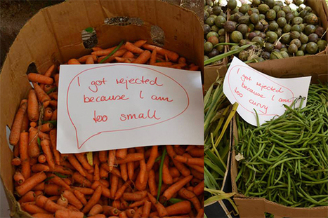 KENYA | Africa has an astonishing food waste problem--this is what one group is doing | Food & Nutrition Security in East Africa | Scoop.it