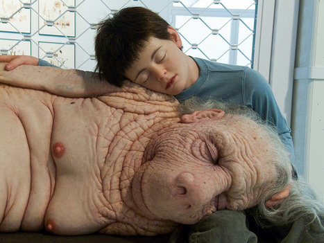 Patricia Piccinini: The Long Awaited | Art Installations, Sculpture, Contemporary Art | Scoop.it
