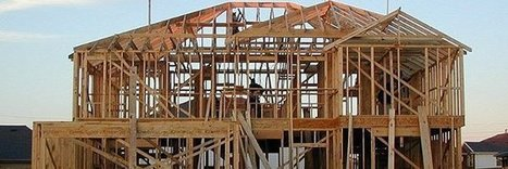 Traitement Anti Termites In Build Green La Curation Scoopit