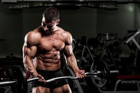 Bodybuilding, Page 23   Scoop it