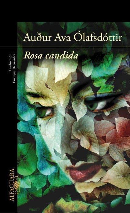 Rosa candida | El Club de los Domingos | Scoop.it