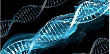 Un gène de susceptibilité impliqué dans l'AVC du jeune adulte   APMP NEWS   Scoop.it