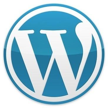 Attacco DDoS alla piattaforma Wordpress: oltre 160.000 blog colpiti | Social Media Consultant 2012 | Scoop.it