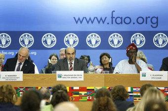 FAO: cambio climático en Suramérica afectará seguridad alimentaria mundial | Agua | Scoop.it