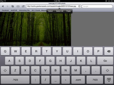 Essential Skill for SLPs: Saving Images from the Web, Part 2 (iOS Edition)! | Speech-Language Pathology | Scoop.it