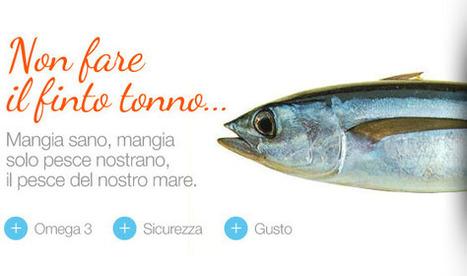 Solo pesce dell'Adriatico a casa nostra: NoStrano, San Benedetto del Tronto | Le Marche un'altra Italia | Scoop.it