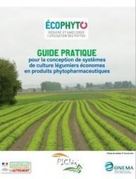 Un nouveau guide pratique pour construire des systèmes légumiers avec moins de phytos | Chimie verte et agroécologie | Scoop.it