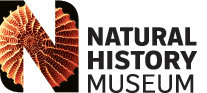 Augmented reality Neanderthal | Natural History Museum | networked media | Scoop.it