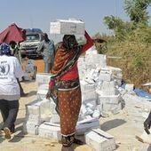 Soudan du Sud : l'ONU appelle aux dons pour les secours humanitaires d'urgence | Action humanitaire dans le monde et ONG | Scoop.it