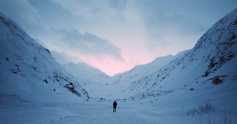 Vidéo : voyage à travers les paysages purs et sauvages de l'Alaska | Biodiversité | Scoop.it