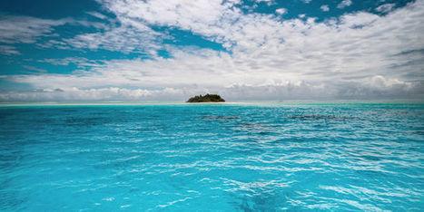 Les zones mortes se multiplient dans les océans | Zones humides - Ramsar - Océans | Scoop.it
