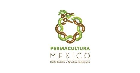 Convergencia de Permacultura en México | ecoagro | Scoop.it