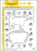 Amazing world of food   CLIL Teacher Education   Scoop.it