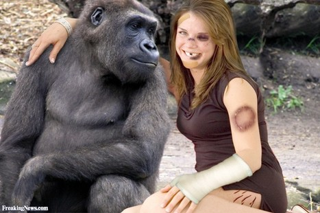 Woman has sex with gorilla