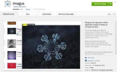 Zoomer sur les images du web avec l'extension Imagus (Chrome, Firefox) | François MAGNAN  Formateur Consultant | Scoop.it