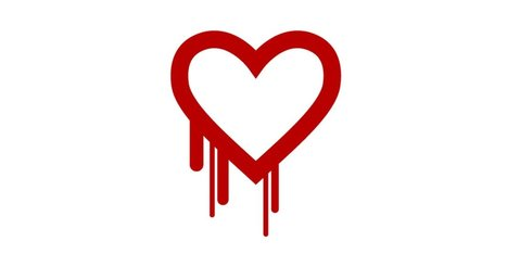 Critical Security Bug 'Heartbleed' Hits Up To 66 Percent Of The Internet | Education & Numérique | Scoop.it
