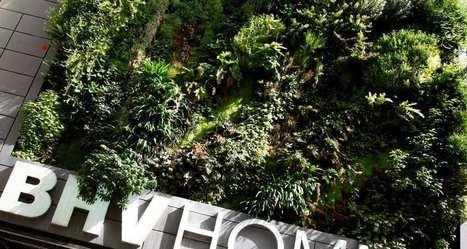 L'agriculture urbaine s'implante sur les toits du BHV Marais à Paris | Agriculture urbaine et rooftop | Scoop.it