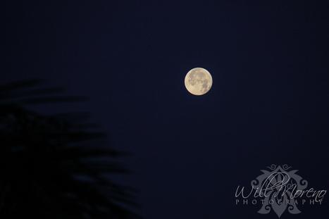 Romantic Moon over Belize | Belize in Photos and Videos | Scoop.it