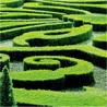 Historic Gardens & Botanic Heritage
