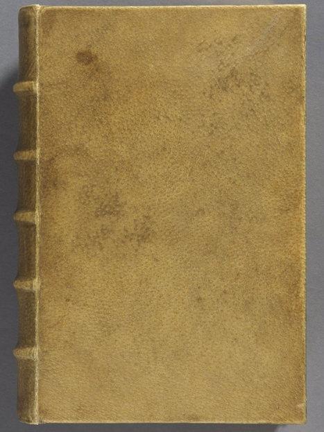 Harvard scientists confirm Arsène Houssaye book is bound in human skin   Xposed   Scoop.it