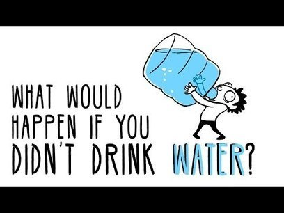 What would happen if you didn't drink water? - Mia Nacamulli   Recursos Online   Scoop.it