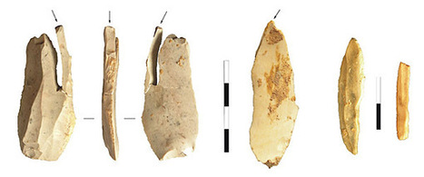 The Rio Secco Cave and the North Adriatic region, a key context for investigating the Neanderthal demis   Archaeology Articles and Books   Scoop.it