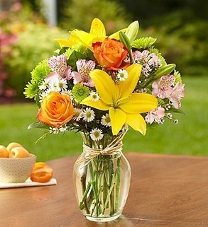 0054ad8f314c 1800flowers coupon codes 15% off Fields of Europe