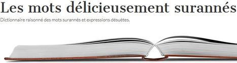 Mots surannés et expressions désuètes | En vrac | Scoop.it