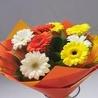 Online Florist in Hyderabad