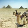 Ihr Spezialist für Ausflugpackete in ganz Ägypten, aegypten ausfluege, Ägypten Reisen und Urlaub