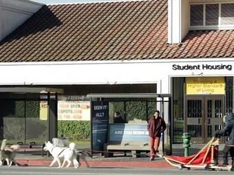 'Best Bus Stop Ever' (Video) | Acupuncture Urbaine | Scoop.it