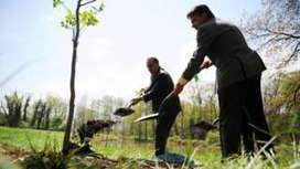 Is there any point in planting new trees? - BBC News | 100 Acre Wood | Scoop.it