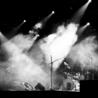 Digital Pioneers in the Music Industry