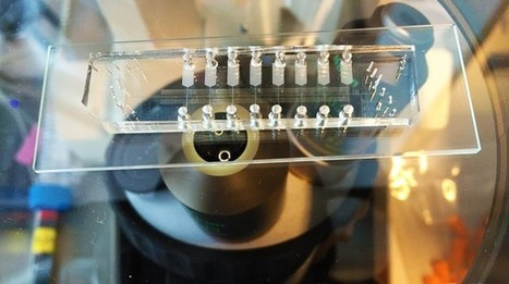 Using microfluidics to improve genetics research | DNA and RNA Research | Scoop.it