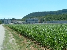 Alpes de Haute-Provence : mouvement de débrayages reconduit à Sanofi Sisteron   Les Sanofi   Scoop.it
