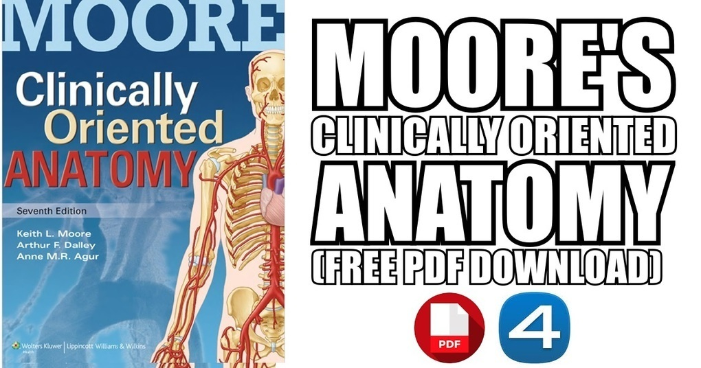 Clinical Neuroanatomy Ebook Free 185 Korshost