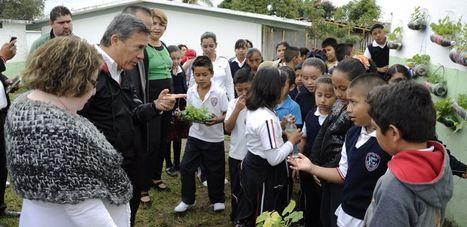 Aplican programa de agricultura urbana en primaria El Chamizal, Veracruz. | Cultivos Hidropónicos | Scoop.it
