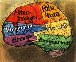 Sound the Alarm: Fraud in Neuroscience - Dana Foundation | Complexity and Emergence | Scoop.it