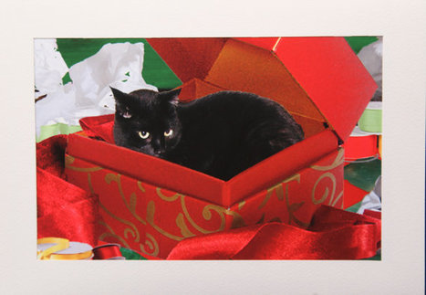 Black Cat Christmas Card- Hand made black cat card   Christmas Cat Ornaments and Cards   Scoop.it