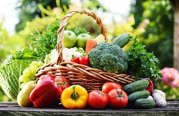 L'agriculture biologique au Maroc - AgriMaroc