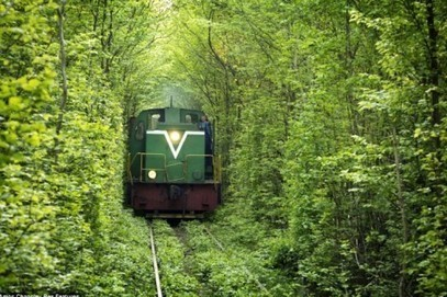 "The secret ""Tunnel of Love"" in Ukraine 