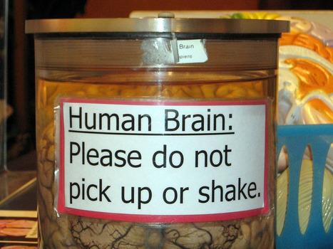 ¿Por qué el cerebro solo se fija las faltas de escritura ajenas? | Literatura desde un punto de vista más bien creativo | Scoop.it
