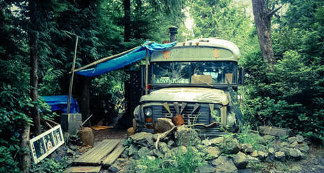 This commune in BC lets you live for free and pays you in drugs (Video) | Amazing | Scoop.it
