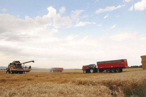 3 données clés pour comprendre l'agriculture européenne | Questions de développement ... | Scoop.it