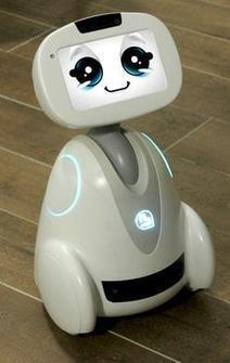 CES 2017: Blue Frog Robotics veut vendre 70000robots Buddy en deuxans | Une nouvelle civilisation de Robots | Scoop.it
