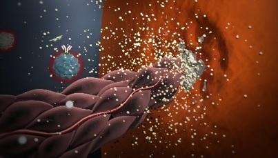 Immunology of the rheumatoid joint | ImmunoUPS | Scoop.it